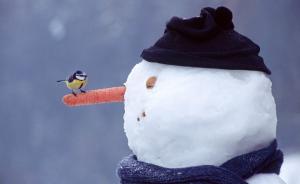 hóember9