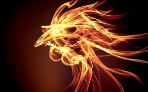 tűz kakas3